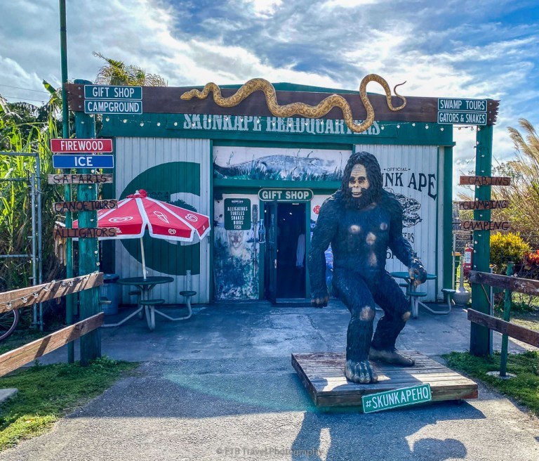 Skunk Ape Headquarters on Tamiami Trail