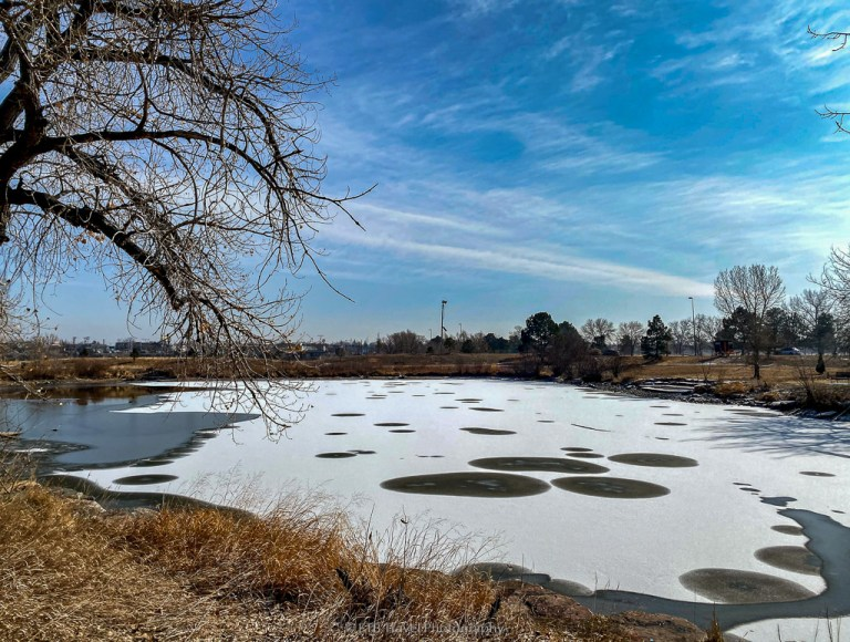 overland pond park on the platte river trail