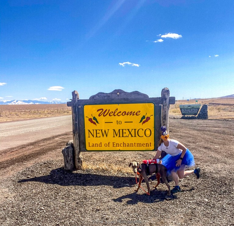 Roadrunner and acme dynamite posing at New Mexico Welcome Sign for State Sign Challenge