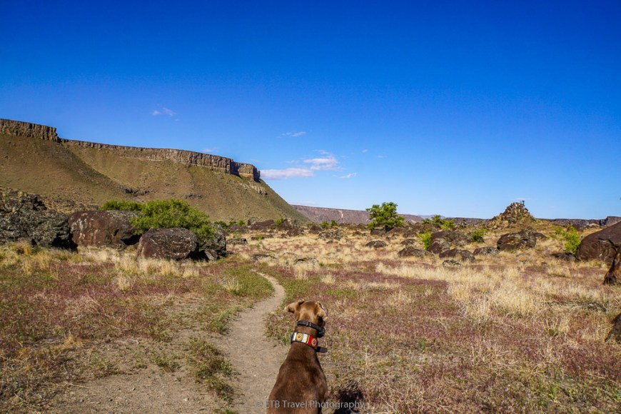 annie on River Canyon Trail East