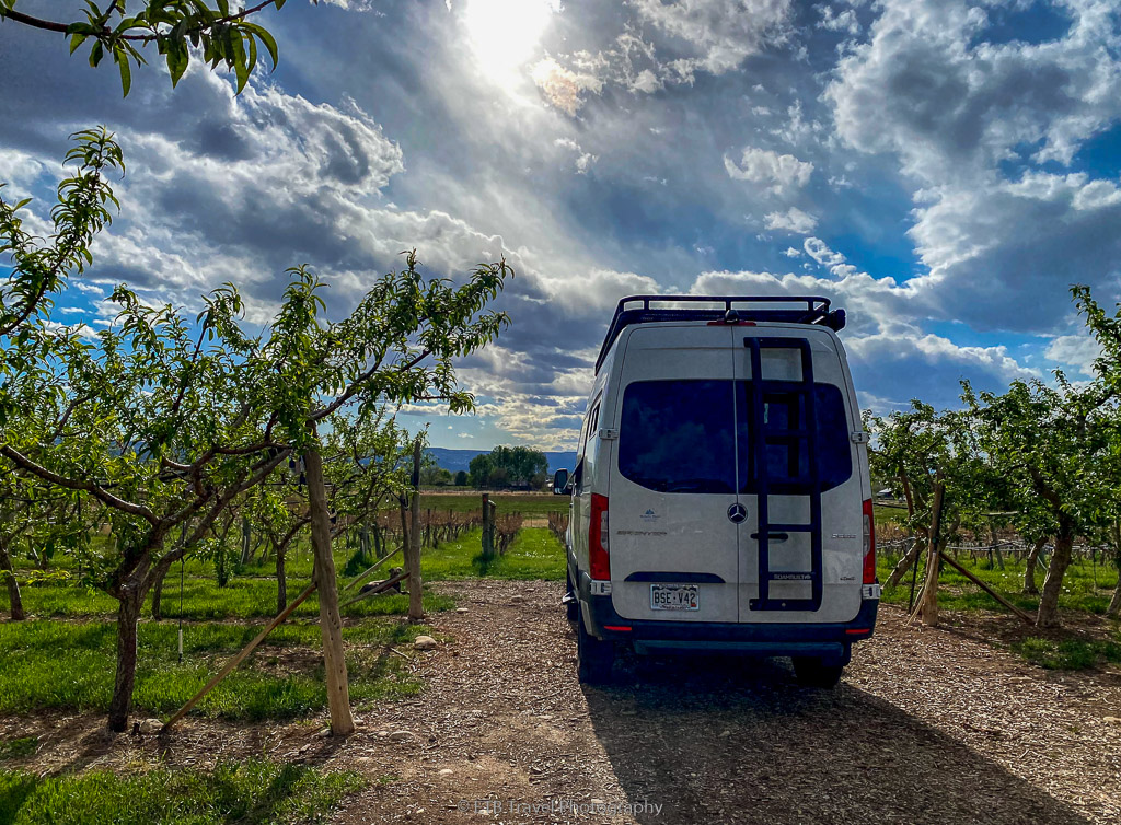 VANgo at Peachfork Orchard and Vineyard