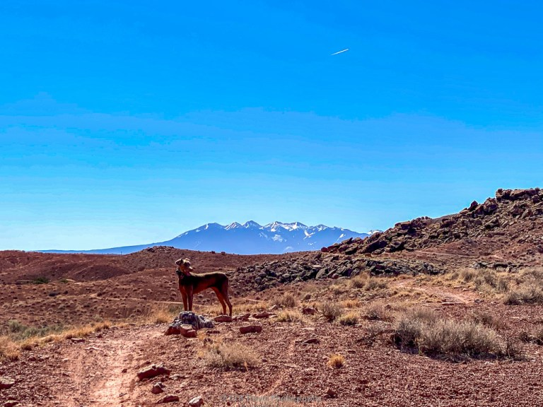 Hiking on Hot Dog Trail off Willow Springs Road