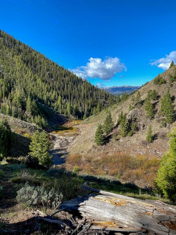view from murdock creek trail