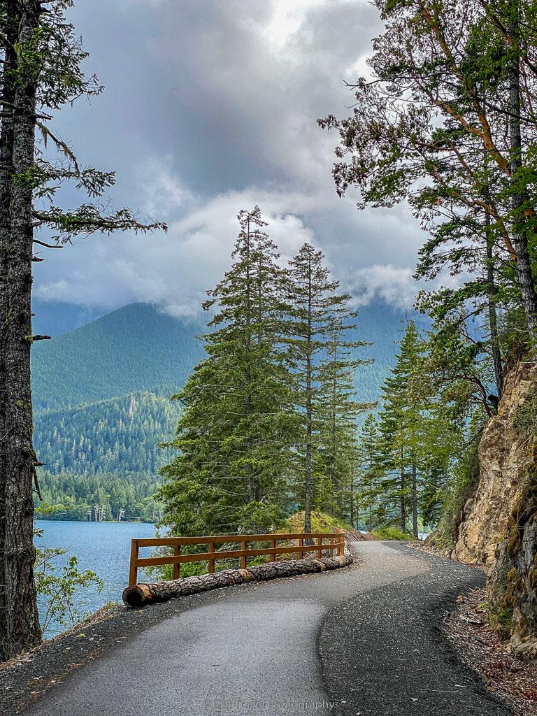 Spruce railroad trail, a dog friendly hike on the olympic peninsula