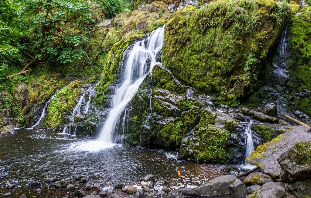lower mashel falls near elbe