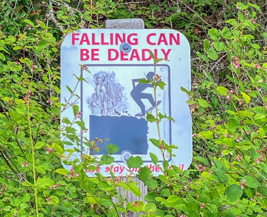 falling can be deadly