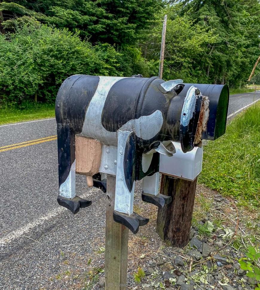cow mail box