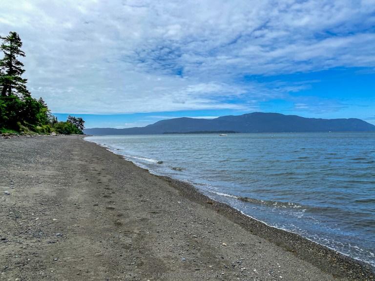 beach across from Willow Inn on lummi island