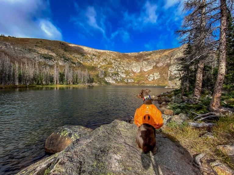 waterdog lakes near salida