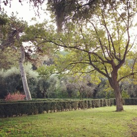 The modern beautiful gardens on the Palatine as seen during our Rome visit.