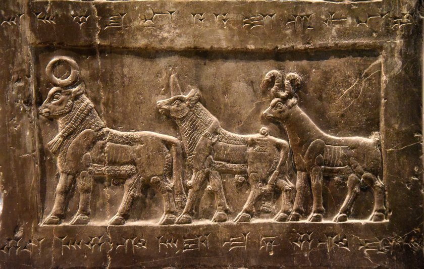 Side B: This register depicts exotic animals from Musri in the form of a river-ox, a rhinoceros (and) an antelope. Photo © Osama S. M. Amin. Black Obelisk of Shalmaneser III.