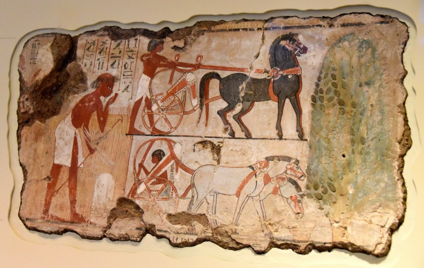 Surveying the field for Nebamun. This scene from the tomb-chapel of Nebamun shows officials inspecting fileds. A farmer checks the boundary marker of the field. Nearby, 2 chariots for the party of officails wait under the shade of sycomore-fig tree. Photo © Osama S. M. Amin.
