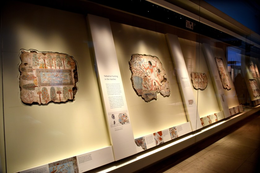 Wall paintings from the tomb-chapel of Nebamun within their large displaying cases. The paintings are displayed vertically but tilted backward at their upper part. Room 61, upper floor, The British Museumn, London. Photo © Osama S. M. Amin.