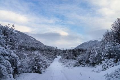La magie de l'hiver s'abat sur l'île Navarino.