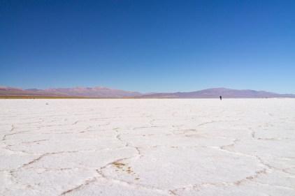 Salar avant la frontière vers le Chili