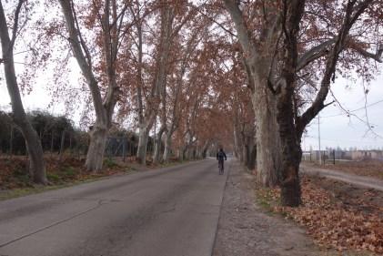 Sur la route de la mort en bicyclette.
