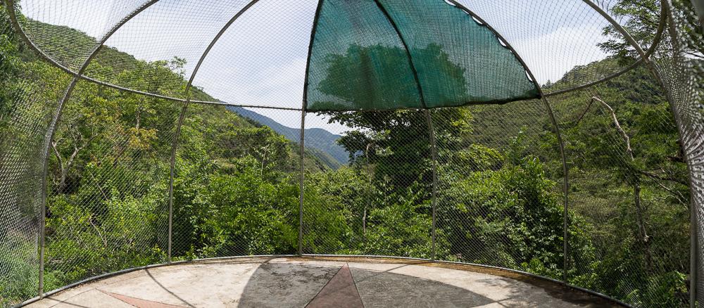 En dehors de la cage, le terrain de jeu des singes.