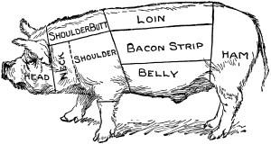 Pig Diagram | ClipArt ETC