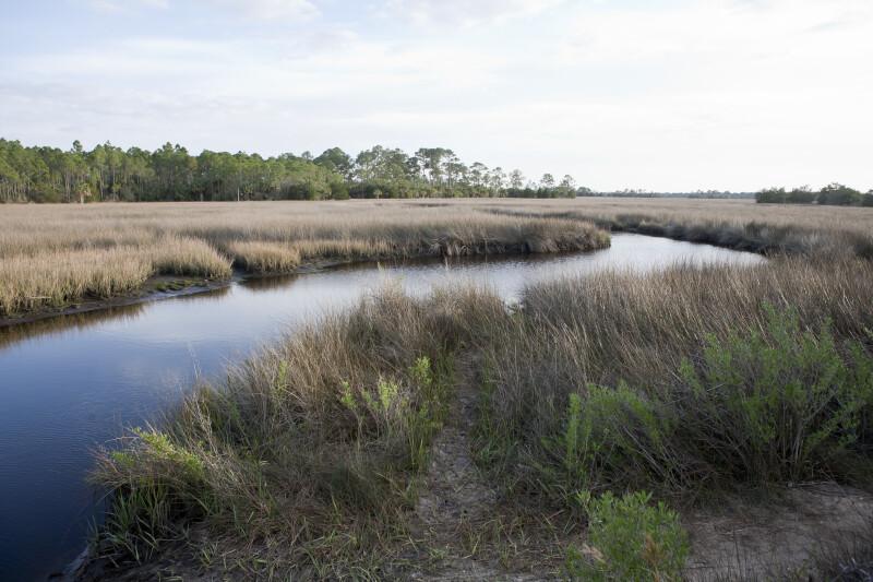Image result for winding marsh creek