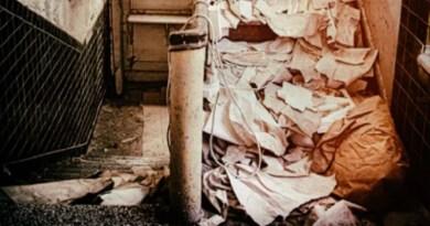 トイレに行く廊下にもゴミが溜まりオムツを使用…(画像はイメージです)