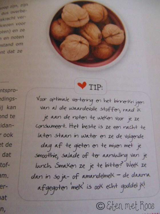 Lisette Kreischer kookboek Plant Power