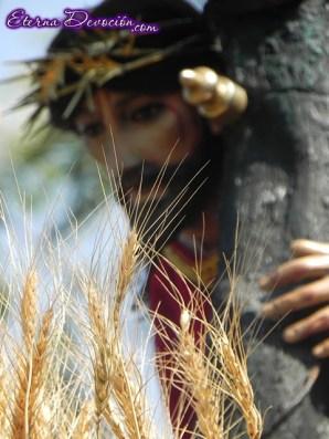 procesion-infantil-jesus-de-san-bartolo-2013-004