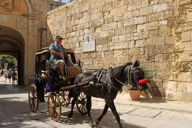 A man on a carriage with a black horse in Mdina