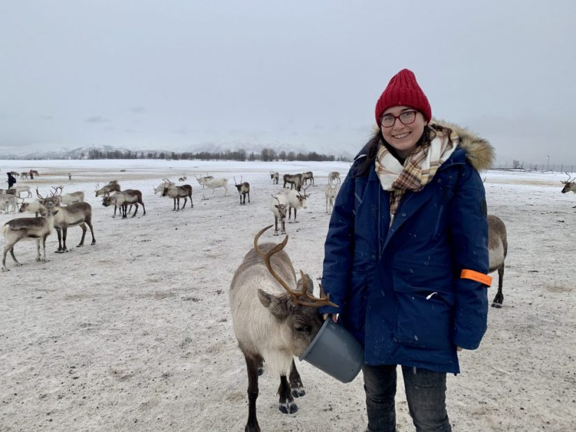 Allison feeding the reindeer out of a bucket at a Sami reindeer camp near Tromso Norway