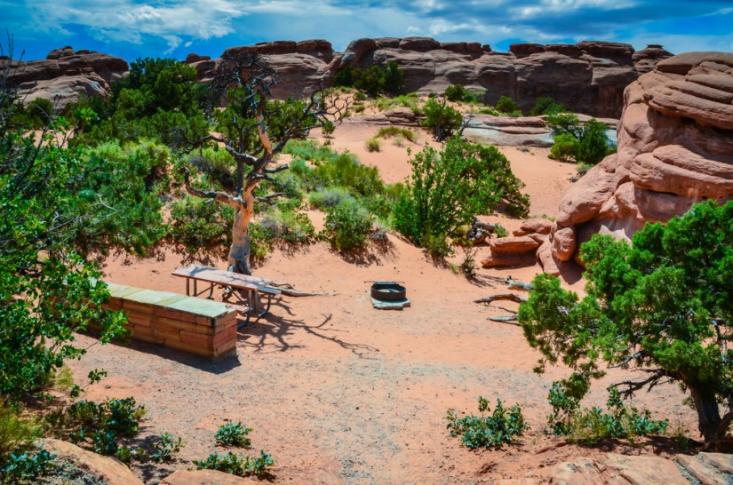 the campsite at arches national park, devils garden, surrounded by trees and red rocks.