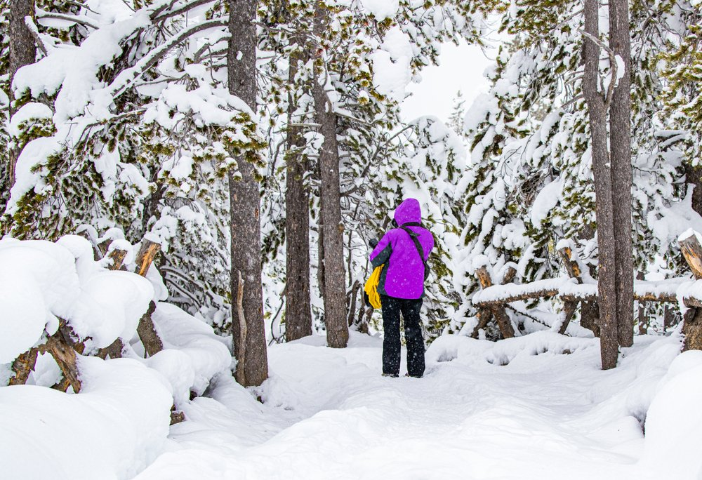 A woman in a pink hooded parka with a camera photographing snow-covered trees