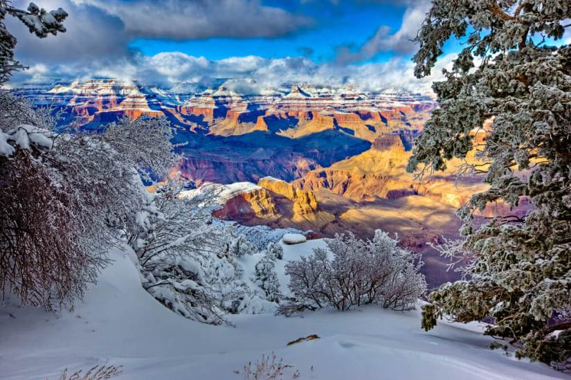 View of the North Rim from Yaki Point in winter at the Grand Canyon South Rim in Arizona, high elevation points blanketed in snow surrounded by trees.