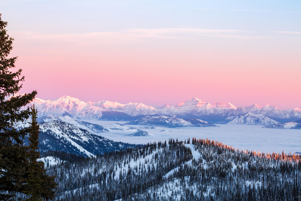Baby blue and pastel pink sky at sunrise over the trees and mountains of the Montana winter landscape in Glacier National Park