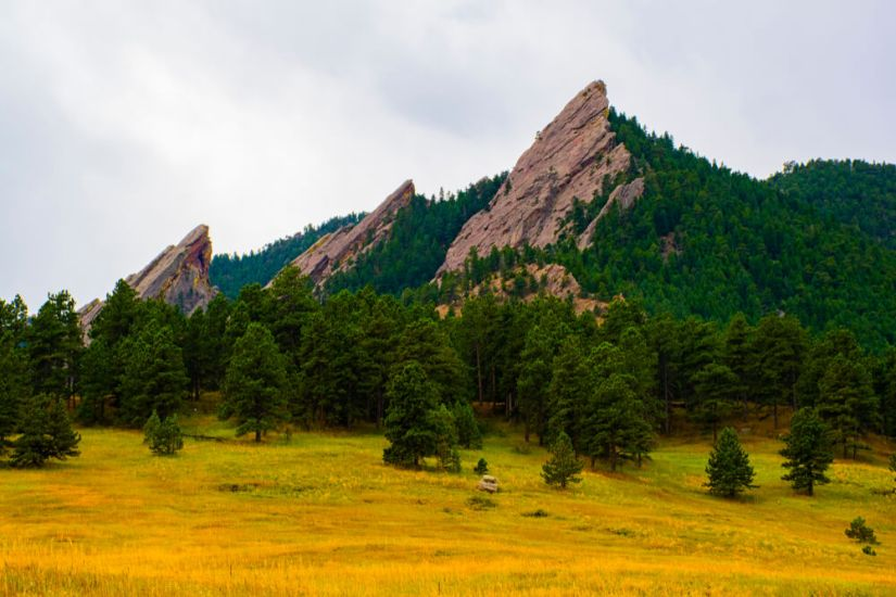 Three peaks showing a cliff face of granite, covered in evergreen trees, with yellow and bright green grass in the foreground, on an overcast day hiking near Denver.