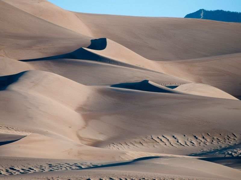 The undulating sand dunes of Great Sand Dunes NP in Colorado