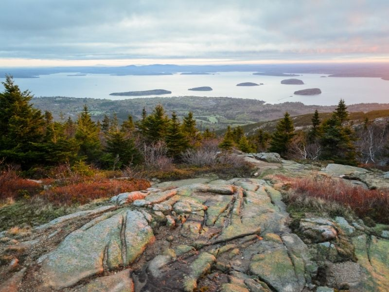 sunset over acadia national park -- water and rocks and trees