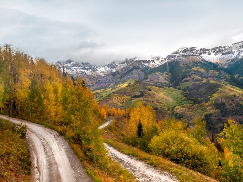 orange and yellow trees along an unpaved road in telluride colorado in the fall