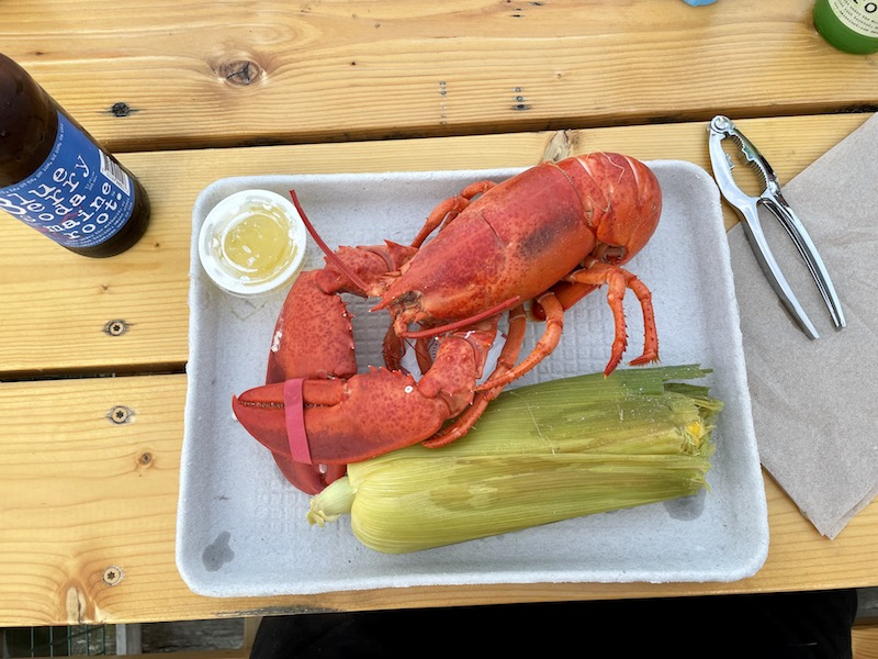 a whole steamed lobster, steamed corn on the cob and a blueberry soda