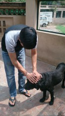 Our Animal Friend-Timber with Hitesh