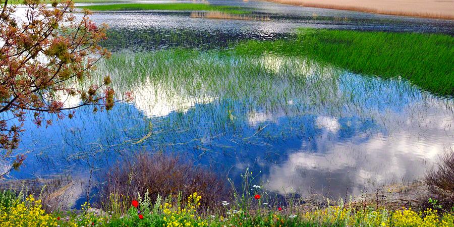 Lake Stymphalia Eternal Greece Ltd