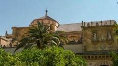 La Mezquita entre palmeras