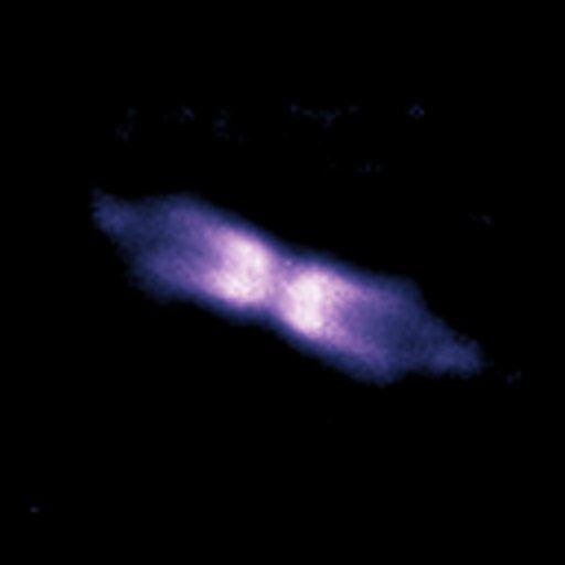 Imagem da concha de matéria em volta da V445 Puppis em outubro de 2006