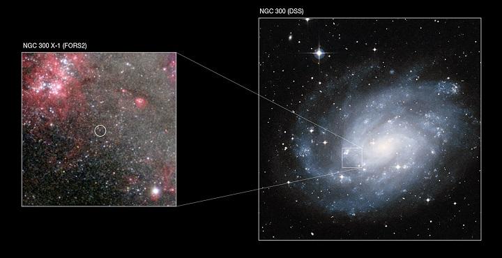 Este mosaico mostra a galáxia espiral NGC 300 em imagem fornecida pela pesquisa Digitized Sky Survey 2 (DSS2), mostrando a posição relativa do buraco negro estelar dentro da galáxia. À esquerda vemos um quadrante da galáxia obtido pelo instrumento FORS2 do VLT. Credito: ESO/ Digitized Sky Survey 2/P. Crowther