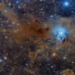 NGC 7023: a Nebulosa da Íris por Federico Pelliccia