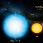 Kepler 11145123: uma estrela muito redonda