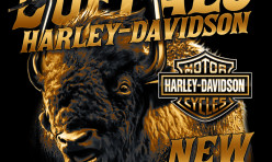 Buffalo Harley-Davidson of New York Handlebar Bison