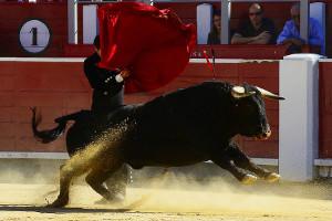 Deutsche launches Spanish equity ETF on Deutsche Börse Xetra