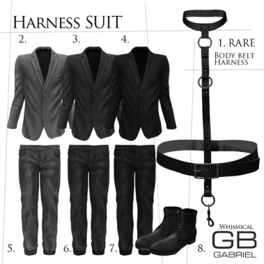 Gabriel_Harness_Suit