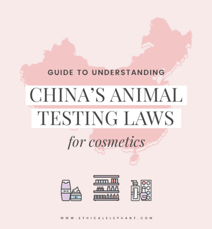 Understanding China's Animal Testing Laws