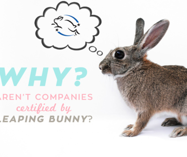 Why Companies Choose Not To Be Leaping Bunny Certified