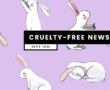 Is Almay Cruelty-Free? | Does Almay Test on Animals?